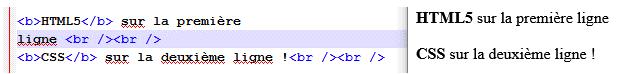 Exemples de passages à la ligne en HTML