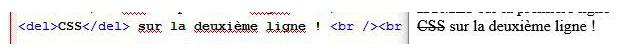 html texte barré