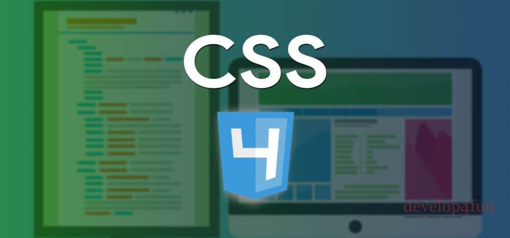 CSS 4