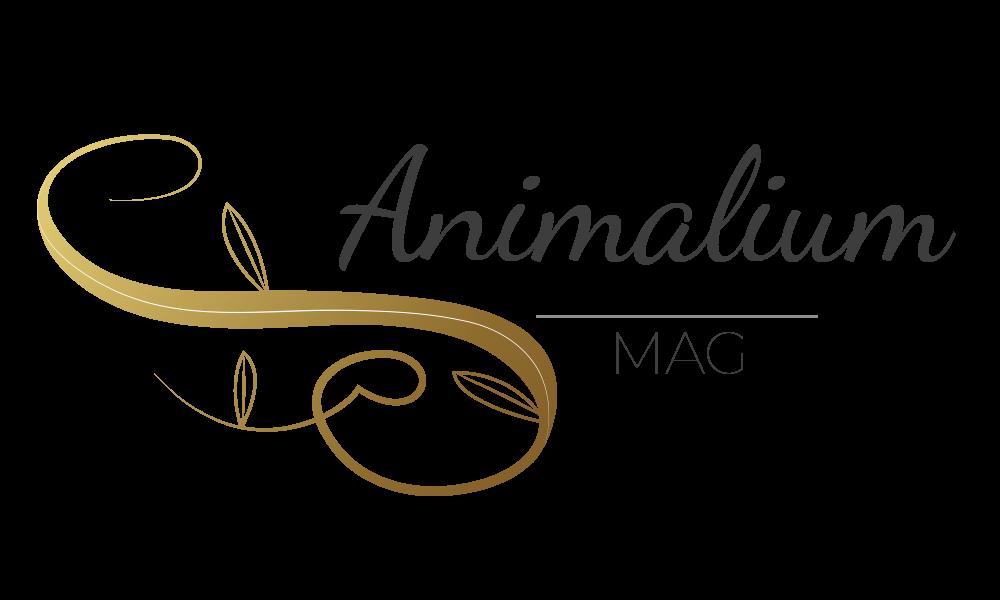 Animalium Mag